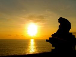 monkey silhouette at sunset in Bali