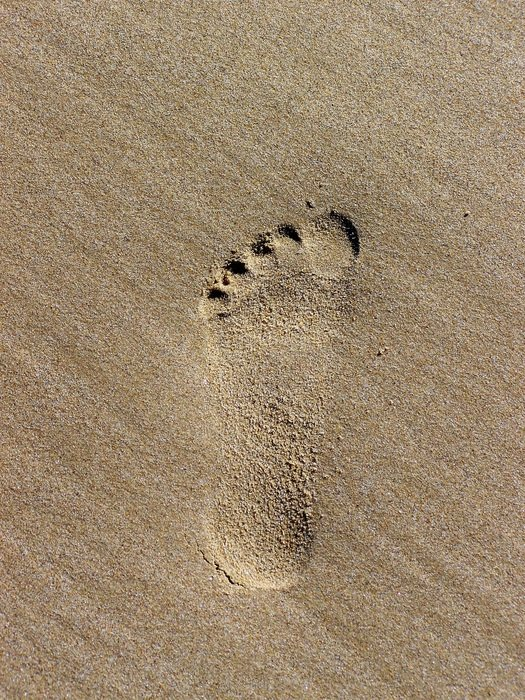 footprint on wet sand