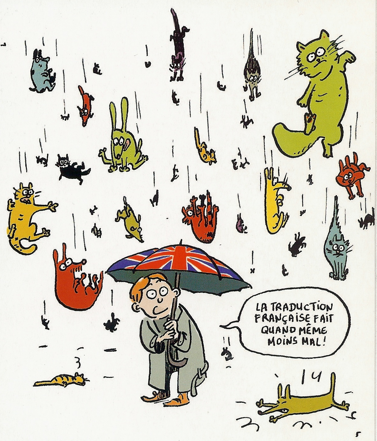Funny Raining Cats And Dogs Free Image