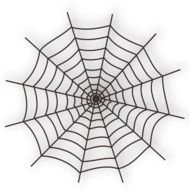 spider web as a graphic illustration