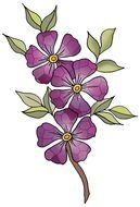 Violet Flowers on branch, drawing