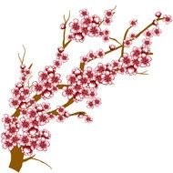 drawing tree branch with pink flowers