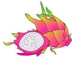 Colorful dragon fruit clipart