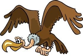 brown Vulture drawing