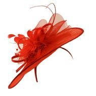 red hat with feather