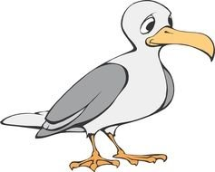 drawing of a sad seagull on a white background