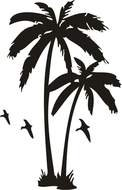 palm trees an birds, black silhouette