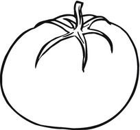 tomato Black And White drawing