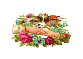 Free Bird Antique Pigeon Victorian Scrap With Pink Roses And