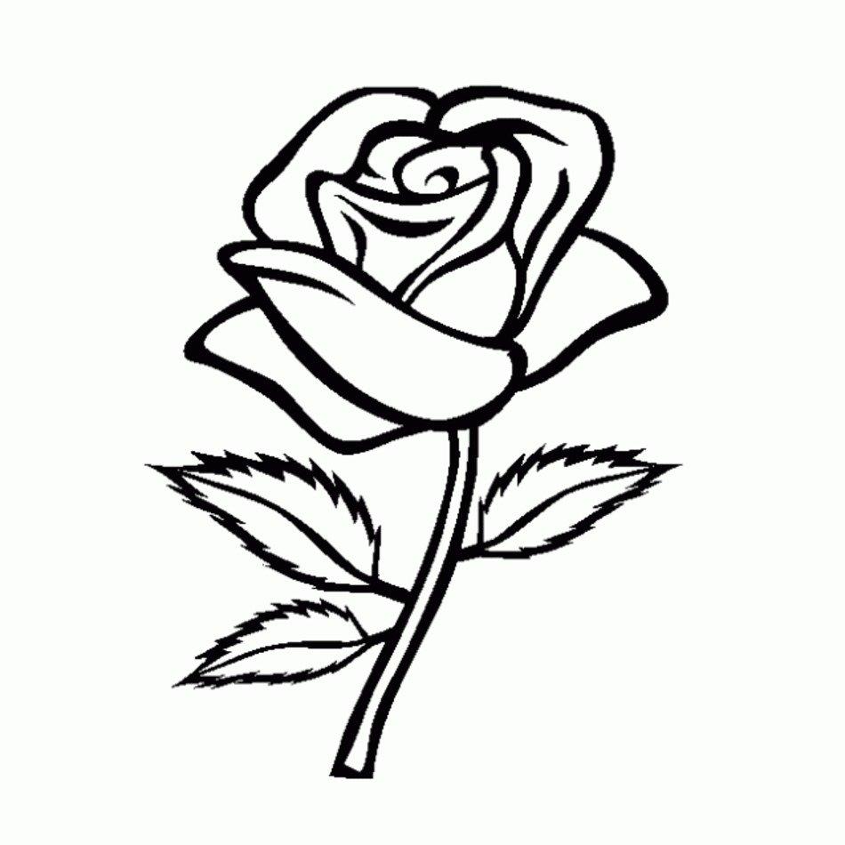Dibujo De Rosas Para Colorear Dibujos Infantiles Free Image