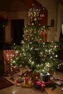 many gifts under the christmas tree