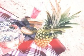 picnic with pineapple on the beach