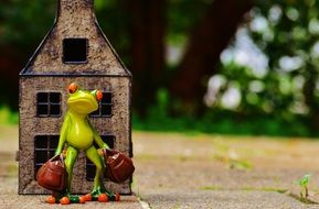 travel frog with bags