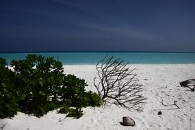 warm white sand in the Maldives
