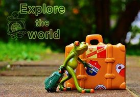 frog travel holidays