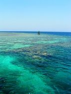 panorama of the coral reef in the red sea