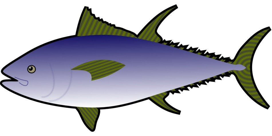 Sea fish clipart