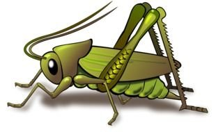 green grasshopper for a clip art