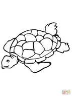 Sea Turtle Coloring Online