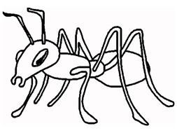 black and white drawing of an ant