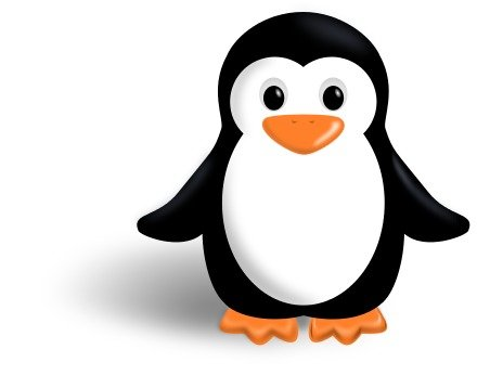 cute penguin on the white background