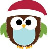 owl in santa claus hat