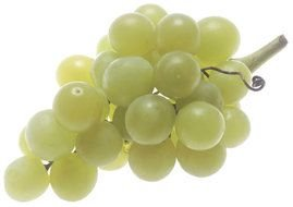 photo of green grapes on a white background