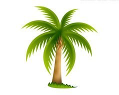 green palm painted in computer graphics
