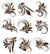 Name Vector Floral Elements For Design clipart