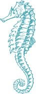 Clipart of sea Horse