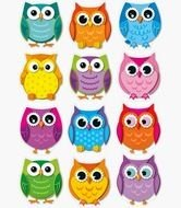 twelve Colorful cartoon Owls