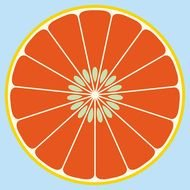 abstract Grapefruit drawing