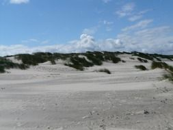 sand dunes at the North sea coast
