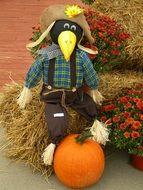 Scarecrow in the autumn