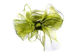 green bow for a gift on a white background