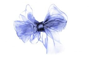 purple bow for a gift on a white background