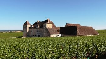 Vougeot Clos du Château is a famous castle of the XII century