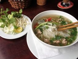 vietnamese food pho spoup