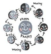 drawn different phases of the moon