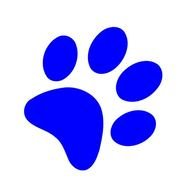 Blue Paw Print Drawing