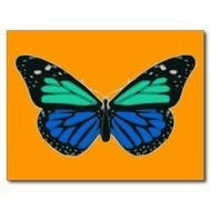 Blue Green Butterfly Postcard Zazzle