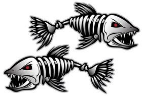 drawn fish skeletons