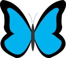 blue butterfly with a black outline on a white background