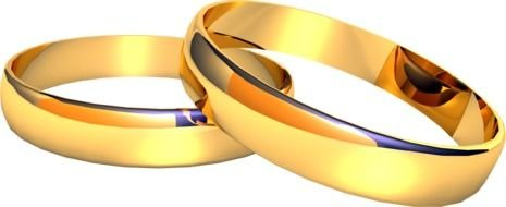 two gold wedding rings on a white background