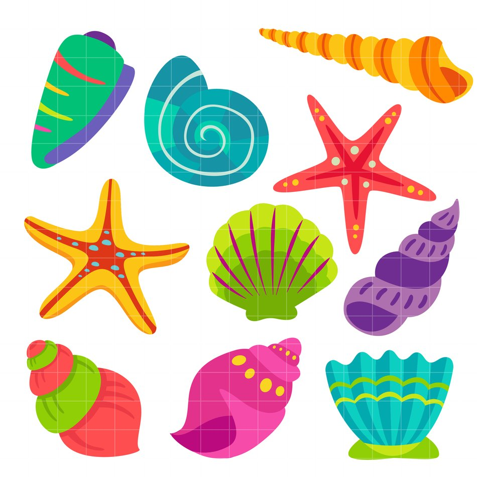 clipart of colorful seashells