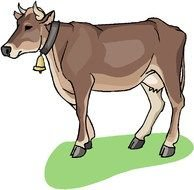 painted brown cow with a golden bell
