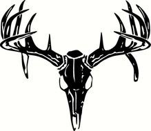217 Whitetail Deer Illustrations, Royalty-Free Vector Graphics & Clip Art -  iStock