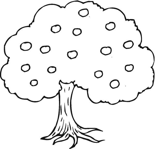 Kolorowanki Drzewa I Malowanki Do Druku Free Image