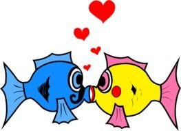 clipart of the kissing fishes