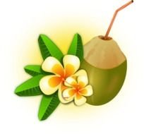 Cocktail Coconut Drink Flower Food Fruit Hawaii